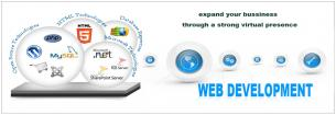 Website development,,Ecommerce,Logo designing services